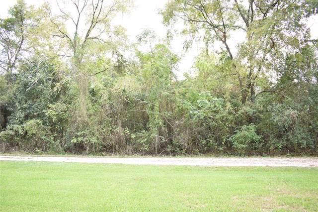 192 Donna Drive, Livingston, TX 77351 (MLS #12893140) :: Giorgi Real Estate Group