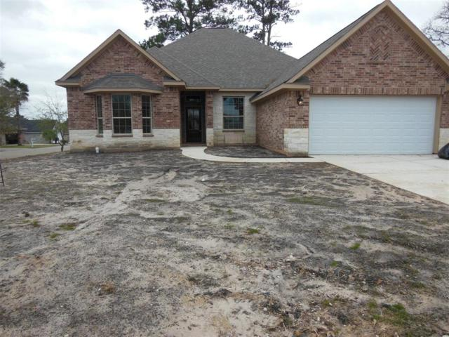 17441 Shadywater Drive, Montgomery, TX 77356 (MLS #12950421) :: Caskey Realty