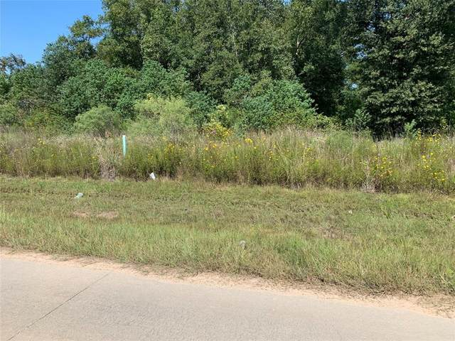 734 County Road 5017, Cleveland, TX 77327 (MLS #12986544) :: Christy Buck Team