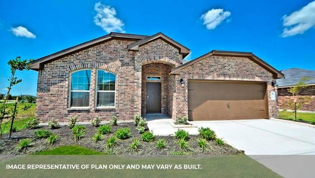 1502 Custer Ridge Court, Missouri City, TX 77459 (MLS #13089896) :: Lerner Realty Solutions