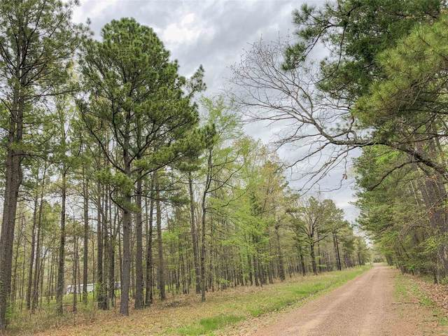 0 County Rd 4223, Simms, TX 75574 (MLS #13159942) :: Connell Team with Better Homes and Gardens, Gary Greene