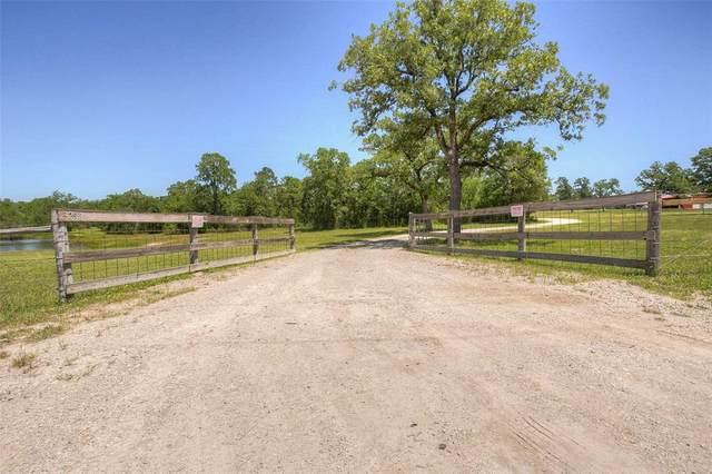 66.64 acres Wood Farm Road, Huntsville, TX 77320 (MLS #13178694) :: Ellison Real Estate Team