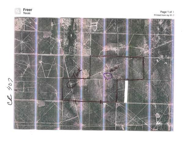2140 Hwy 59 E, Freer, TX 78357 (MLS #13192708) :: Phyllis Foster Real Estate