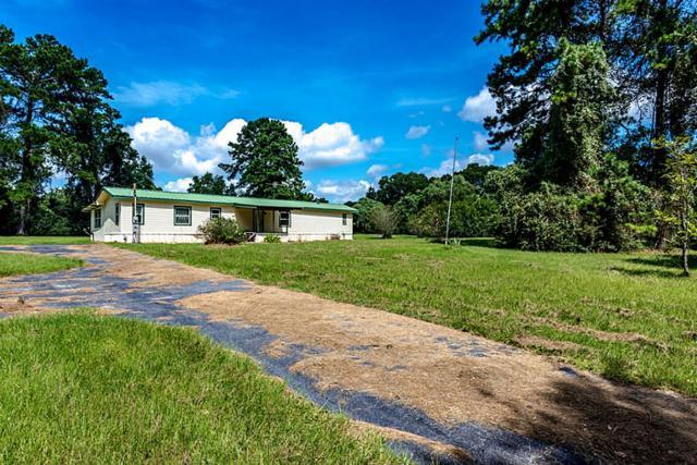 26233 Dobbin Huffsmith Road, Magnolia, TX 77354 (MLS #13320477) :: Krueger Real Estate