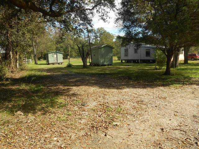 6435 County Road 42, Rosharon, TX 77583 (MLS #13356261) :: Christy Buck Team