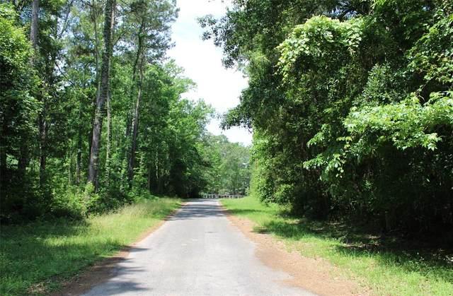 000 Holly Lane, New Caney, TX 77357 (MLS #13473828) :: Keller Williams Realty