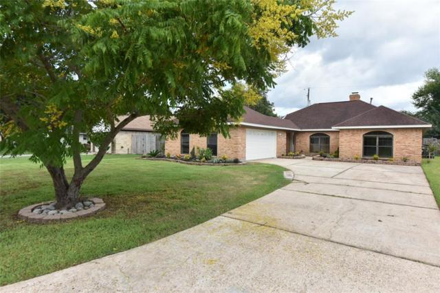 3607 Dove Meadows Drive, Dickinson, TX 77539 (MLS #13487055) :: The SOLD by George Team