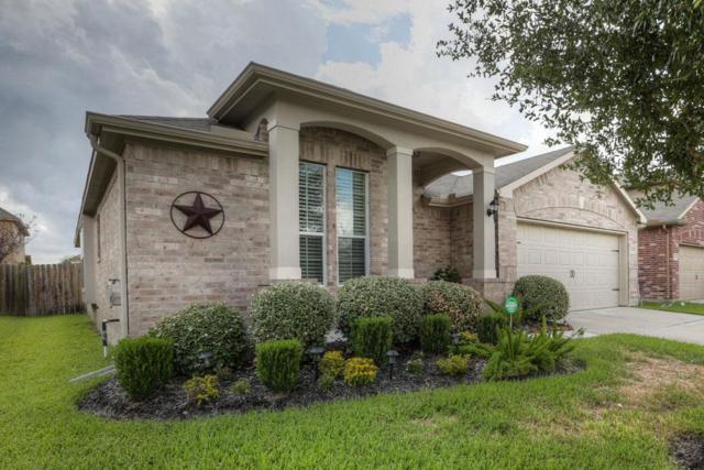 11927 Harristown Drive, Houston, TX 77047 (MLS #13489714) :: Christy Buck Team