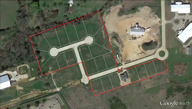 1702 Twin Oaks Circle Circle, Brenham, TX 77833 (MLS #13519217) :: The SOLD by George Team
