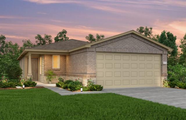 24051 Hay Needle Lane, Hockley, TX 77447 (MLS #13537567) :: The SOLD by George Team