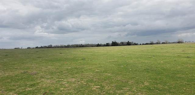 Tract A-4 Cr 208, Hallettsville, TX 77964 (MLS #13650155) :: Connell Team with Better Homes and Gardens, Gary Greene