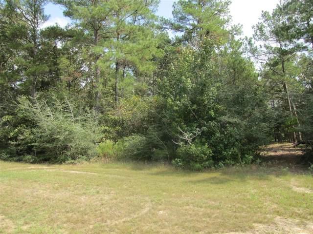 29306 Village Ridge Court, Magnolia, TX 77355 (MLS #13661696) :: Green Residential
