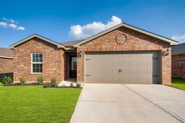 20914 Capulin Lakes Drive, Hockley, TX 77447 (MLS #13662955) :: The Wendy Sherman Team