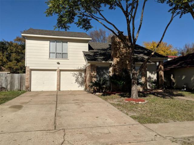 21646 Park Tree Lane, Katy, TX 77450 (MLS #13670068) :: Connect Realty