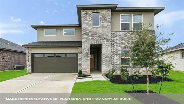 29318 Hoelzen Hollow Drive, Katy, TX 77494 (MLS #13695650) :: Christy Buck Team
