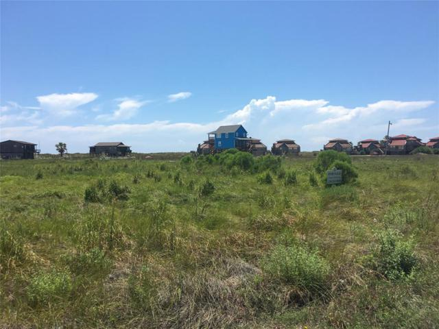 Lot 31 Private Road 640 Driftwood, Matagorda, TX 77457 (MLS #13745370) :: The Freund Group