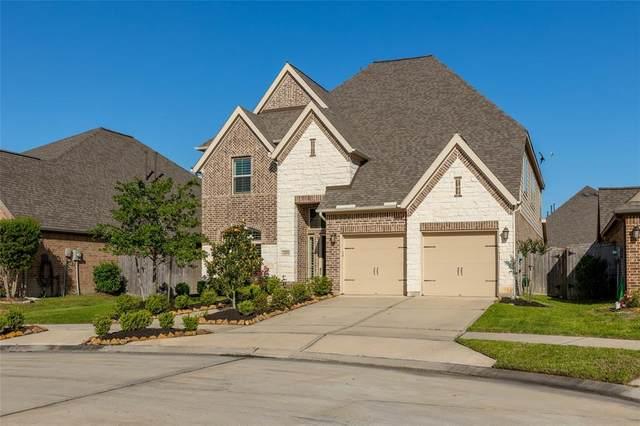 10006 Harbor Light Drive, Missouri City, TX 77459 (MLS #13760443) :: The Sansone Group