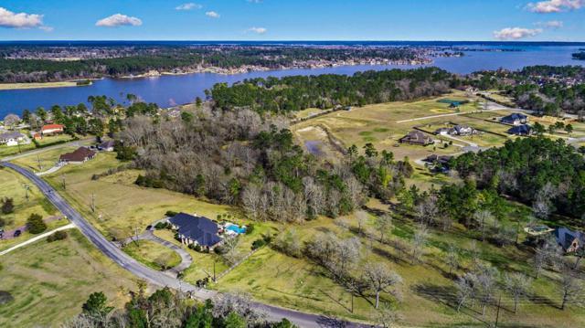 11799 Grand Harbor Boulevard, Montgomery, TX 77356 (MLS #13877934) :: Green Residential