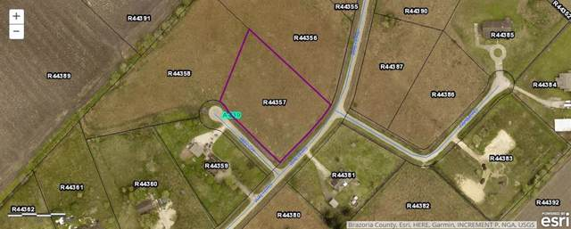 0 Welch Court, Needville, TX 77461 (MLS #13880918) :: The SOLD by George Team