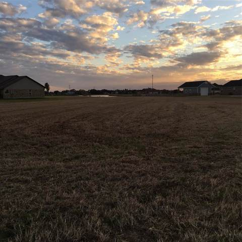 13203 Lakeview Meadow Drive, Richmond, TX 77469 (MLS #13943890) :: Green Residential