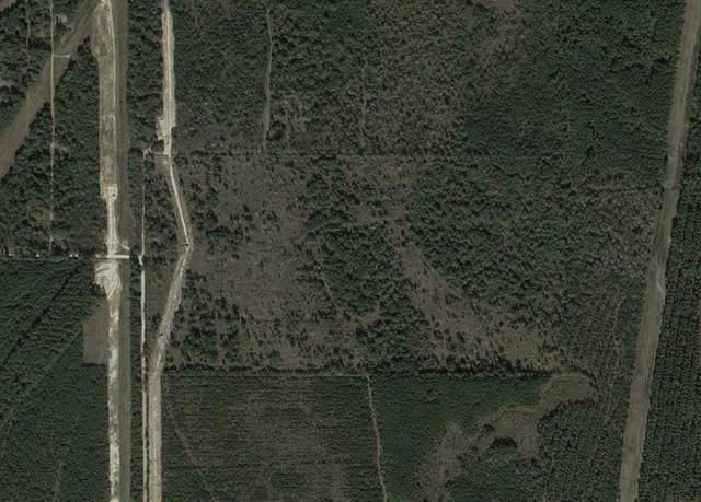 0 Pelican Road Road, Shepherd, TX 77371 (MLS #13970267) :: Guevara Backman