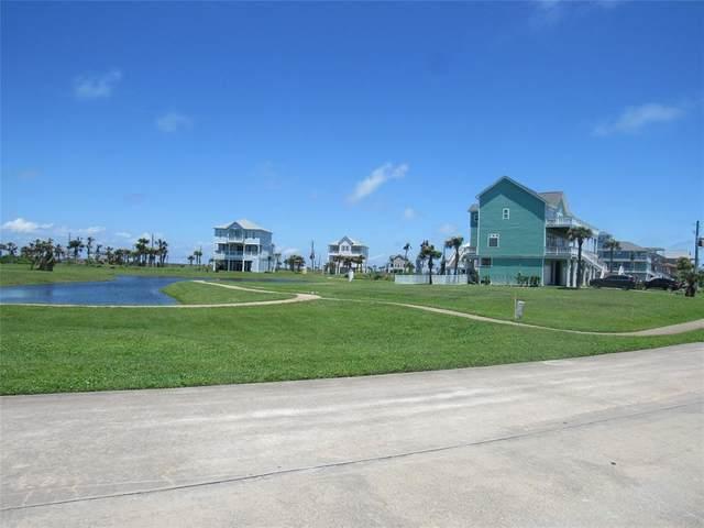 26010 Flamingo Drive, Galveston, TX 77554 (MLS #14053808) :: Connect Realty