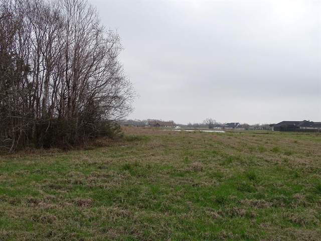 627 Lily Lane, Rosharon, TX 77583 (MLS #14058643) :: Ellison Real Estate Team
