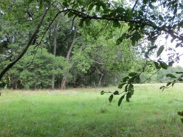 00 Hattermann Lane, Weimar, TX 78962 (MLS #14081728) :: Ellison Real Estate Team