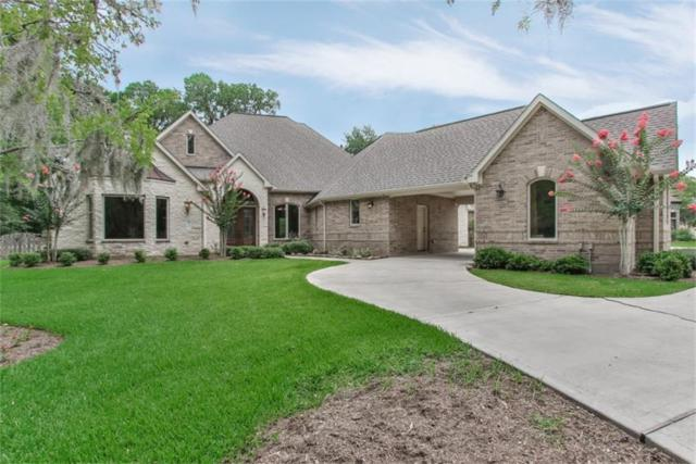 3530 Wellspring Lake Drive, Fulshear, TX 77441 (MLS #1410011) :: Krueger Real Estate