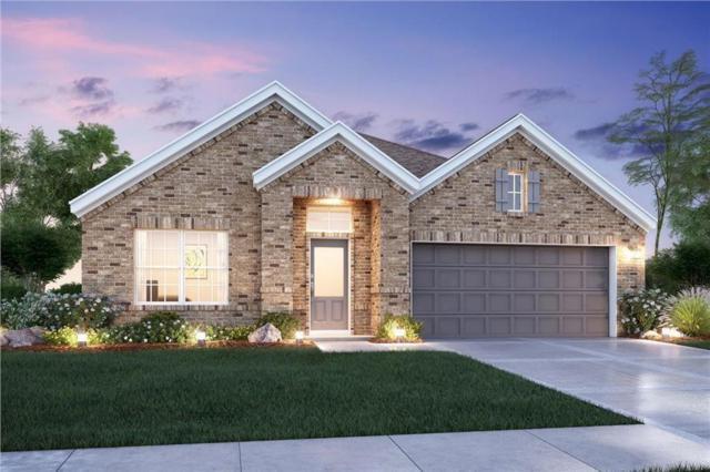21823 Rose Maris, Tomball, TX 77377 (MLS #14119378) :: Fairwater Westmont Real Estate