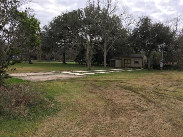 415 Red Oak Street, Brazoria, TX 77422 (MLS #14215608) :: Caskey Realty