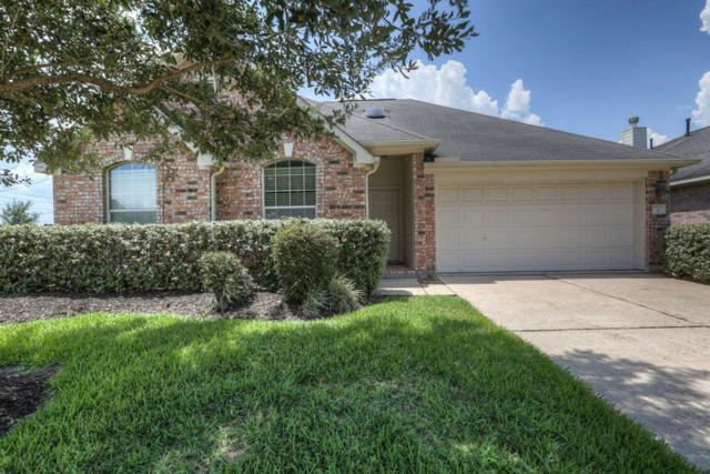 1 Palomar Drive, Manvel, TX 77578 (MLS #14300712) :: Christy Buck Team