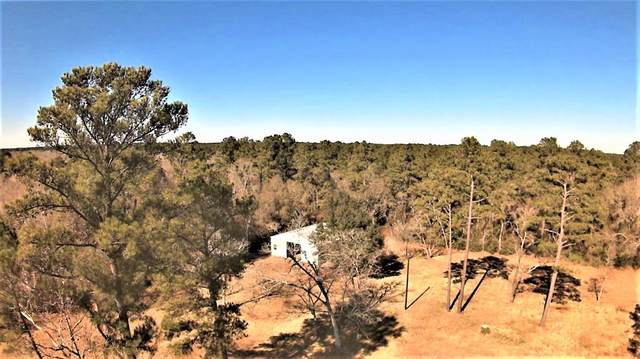 29962 Howell Road, Waller, TX 77484 (MLS #14329906) :: Michele Harmon Team
