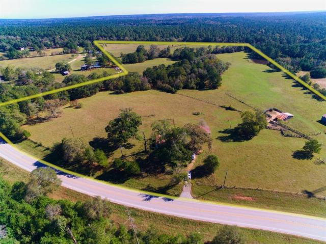 4151 S Fm  1486 Road, Montgomery, TX 77316 (MLS #14332868) :: The SOLD by George Team