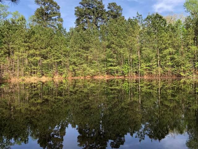 10453 River Ridge Lane, Conroe, TX 77304 (MLS #14383090) :: The Home Branch