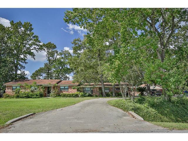 33315 Katy Lee Lane, Magnolia, TX 77354 (MLS #14473568) :: Krueger Real Estate