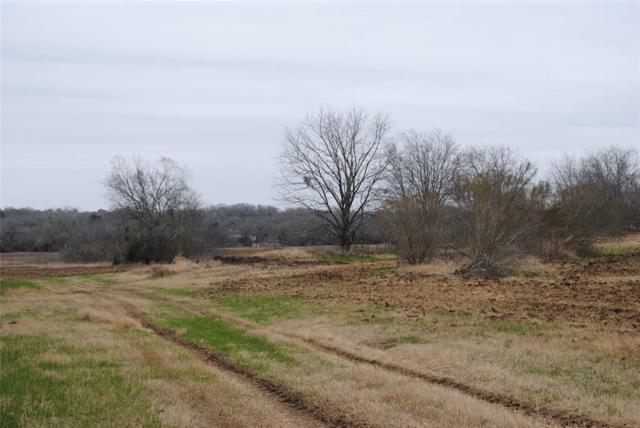 912 W Osr, Caldwell, TX 77836 (MLS #14505003) :: Christy Buck Team