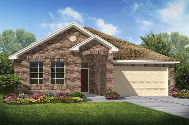 30413 Butternut Oak Lane, Magnolia, TX 77355 (MLS #14540037) :: All Cities USA Realty