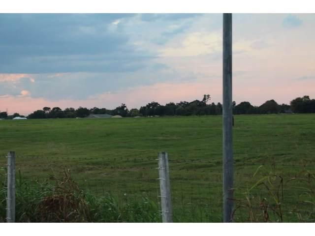 6403 Schurmier Road, Houston, TX 77048 (MLS #14540194) :: Green Residential