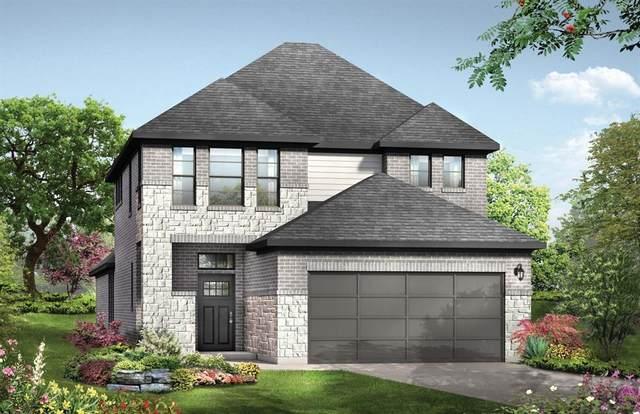 31227 Balsam Hawk Lane, Hockley, TX 77447 (MLS #14621542) :: Caskey Realty