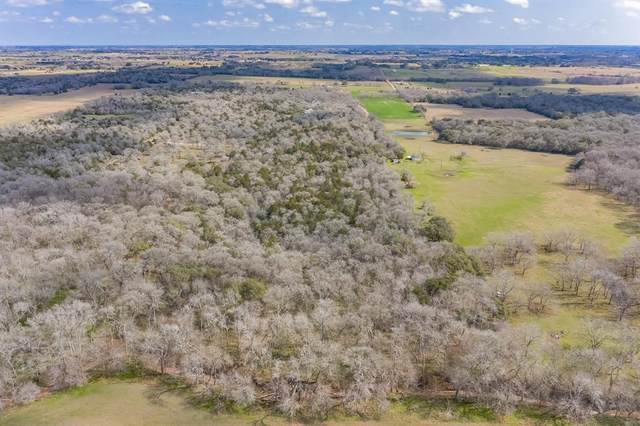 3439 Seidel Road, Schulenburg, TX 78956 (MLS #14654218) :: The Bly Team