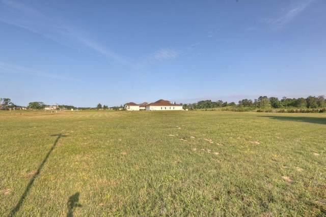 11693 Grandview Drive, Montgomery, TX 77356 (MLS #14672189) :: Lerner Realty Solutions
