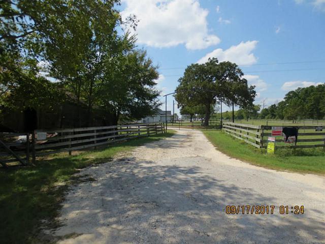 9856 Fm 1774, Navasota, TX 77868 (MLS #14676014) :: Magnolia Realty