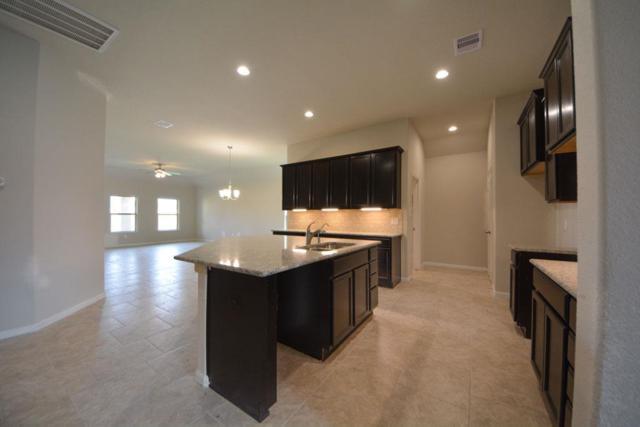 6619 Sterling Shores Lane, Rosenberg, TX 77471 (MLS #14687047) :: Team Sansone
