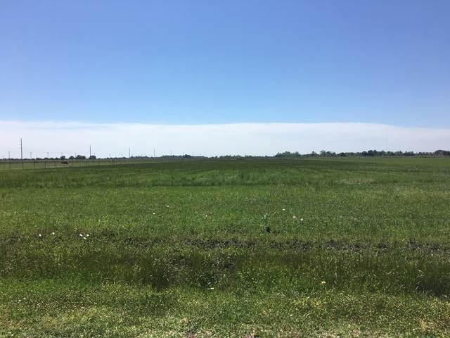 000 Highway 124/ Fig Ridge Road, Winnie, TX 77665 (MLS #14694979) :: The Sansone Group