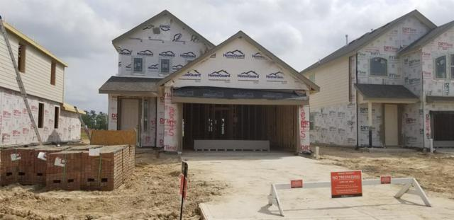 25245 Woods Acre Drive, Porter, TX 77365 (MLS #14755342) :: Texas Home Shop Realty