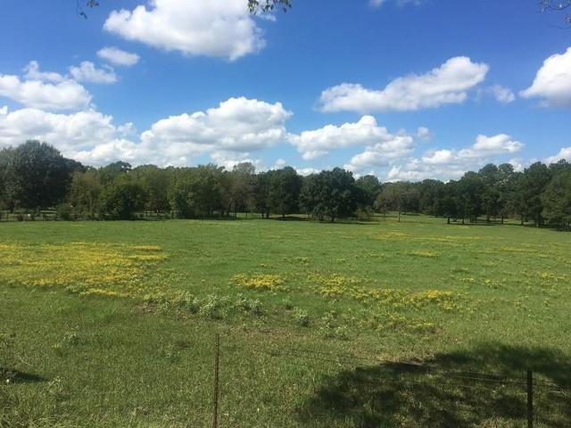12827 Bethel Road, Montgomery, TX 77356 (MLS #14802872) :: Fairwater Westmont Real Estate