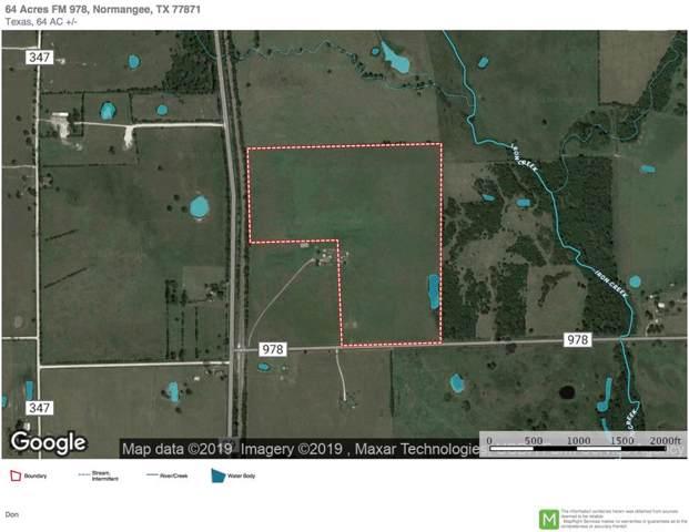 64 Acres Fm 978, Normangee, TX 77871 (MLS #14803239) :: The Queen Team