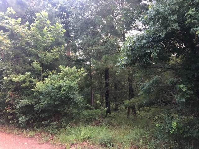 12 Shadow Lane, Montgomery, TX 77316 (MLS #14834647) :: Area Pro Group Real Estate, LLC