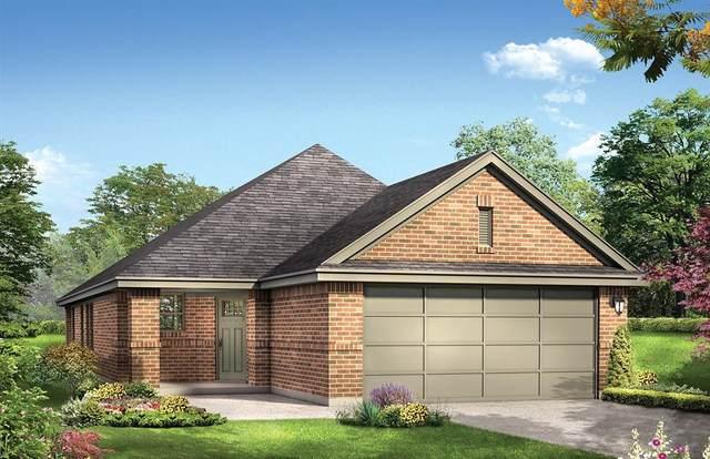 17138 Broadleaf Oak Drive, Hockley, TX 77447 (MLS #14926739) :: Caskey Realty